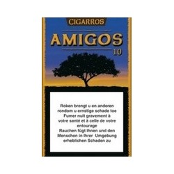 AMIGOS/10