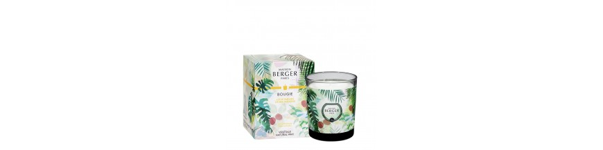 Bougie Parfumée Immersion 240gr.
