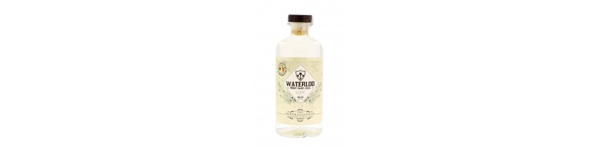 Gin de Waterloo