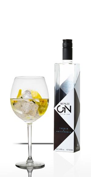 Gin Thesis & Antithesis...