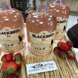 The Blackbird's Gin 0.5l - 40%