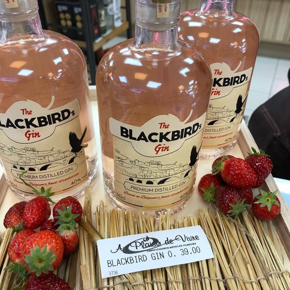 The Blackbird's Gin 0.5l - 40%